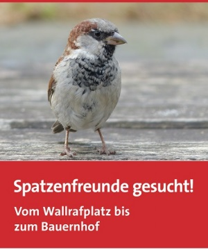 Titelseite Spatzenflyer