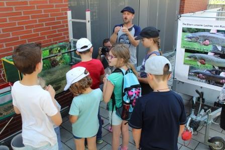 Ein Highlight zum Schluss waren die in einem Aquarium eigens für den Workshop mitgebrachten jungen Lachse.