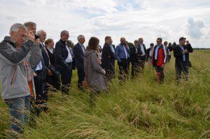 Direkt vor Ort konnten sich die Stiftungsratsmitglieder einen Überblick über die durchgeführten Grünlandextensivierungsmaßnahmen machen.