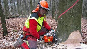 Auszubildender zum Forstwirt (Bildnachweis: planet-beruf.de)