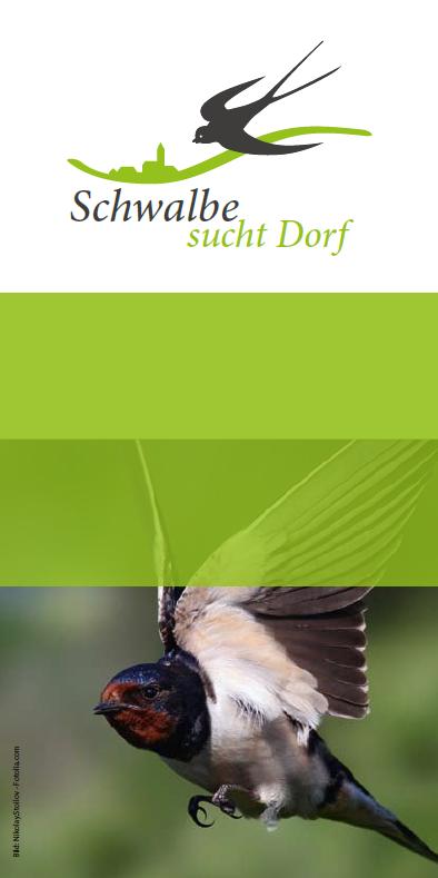 Flyer Schwalbenprojekt
