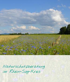 teaser_naturschutz