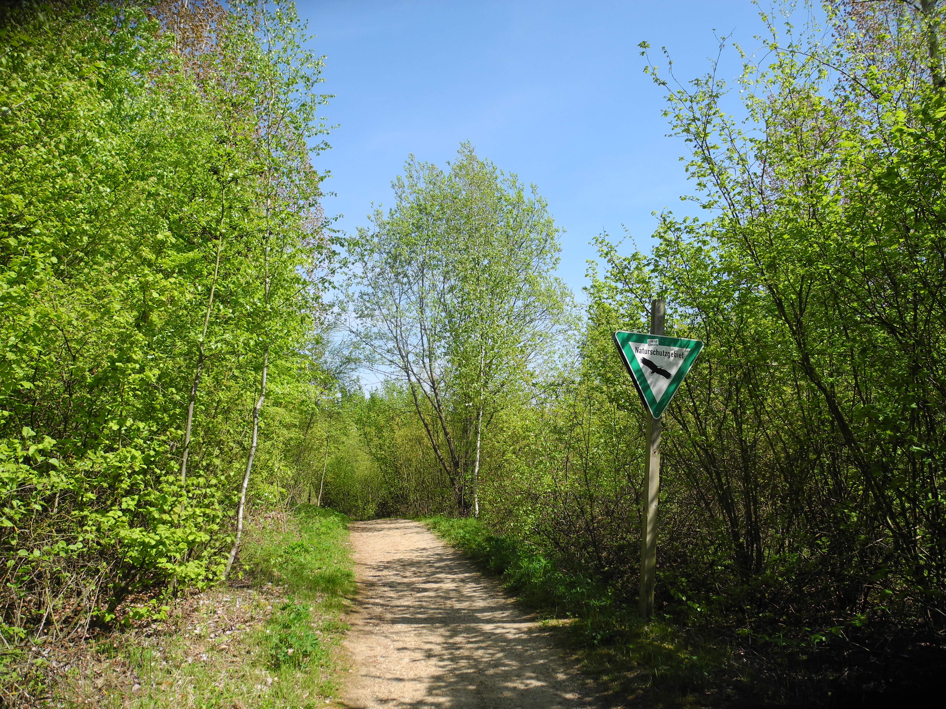 Wald am Blaustein-See in Eschweiler