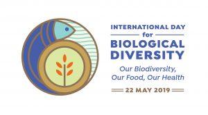 Intrenationaler Tag der Biodiversität 2019