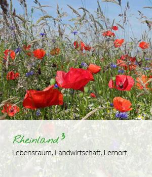Rheinland 3 Lebensraum, Landwirtschaft, Lernort