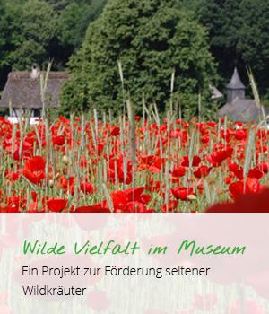 Wilde Vielfalt im Museum